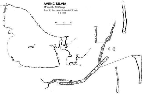 Sílvia, Avenc